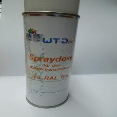 Spraydose Schwarz RAL 9005