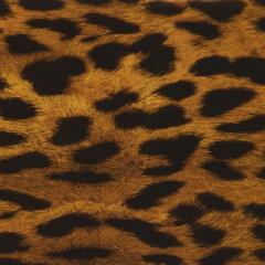 Gepard mit gelben Hintergrund I-141