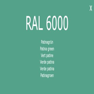 1-K Base Coat RAL 6000 Patinagrün