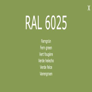 1-K Base Coat RAL 6025 Farngrün